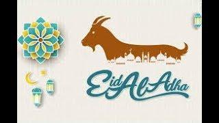 Funny Whatsaap status on Bakra Eid
