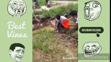 Funny Videos 2017 - Best Prank Whatsapp Funnyav