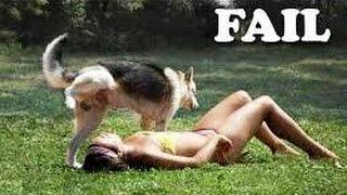 Ultimate Funny Dogs Compilation - Dogs Fails