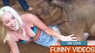 Funniest Videos Tube Trailer