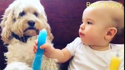 Best Funny Kids Videos 2017 ★ Kids Funny Video ★  Funny Videos For Kids ★ Funny Baby Compilation