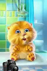 Whatsapp Funny Videos Good Morning tom cat new
