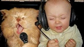 Best Funny Animals & Babies Compilation 2016 ► Funny Cats & Dogs with Babies Try Not to Laugh!