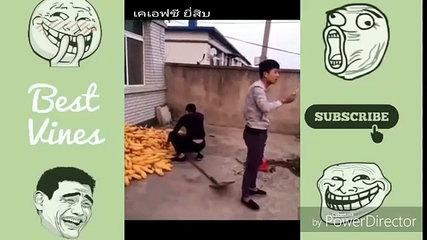 Funny Videos 2017 - Best Prank Whatsapp Funny Videsbhrhb