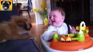 The best funny animals video between dogs and kids 2015, funnyyyyy