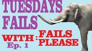 Tuesdays Fails from Fails Please. Ep 1. Funny Videos, Fails, Vines, Funny Cats, Animals and more.