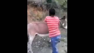 BEAST FUNNY VIDEO  2017, PEOPLE STUPID ACTION #11